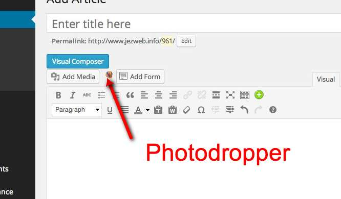 Photodropper insert icon, the hot air balloon