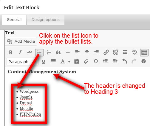 Creating Custom Bullet List Web Design With Wordpressweb Design